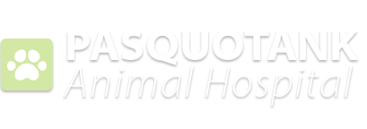 Pasquotank Animal Hospital